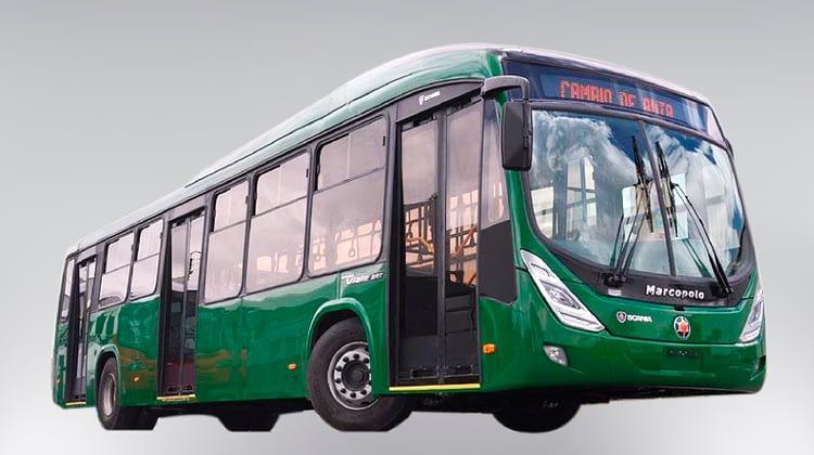 Gran Viale BRT Padrón